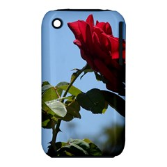 Red Rose 2 Apple Iphone 3g/3gs Hardshell Case (pc+silicone) by trendistuff