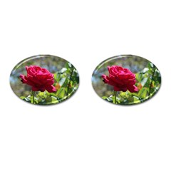 Red Rose 1 Cufflinks (oval) by trendistuff