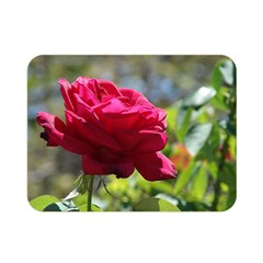 Red Rose 1 Double Sided Flano Blanket (mini)  by trendistuff