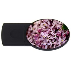 PURPLE LILACS USB Flash Drive Oval (1 GB)  by trendistuff