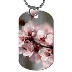Plum Blossoms Dog Tag (one Side) by trendistuff