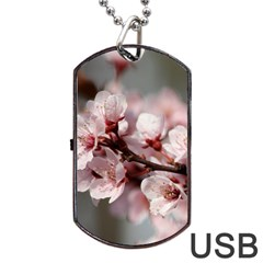Plum Blossoms Dog Tag Usb Flash (two Sides)  by trendistuff