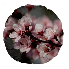 Plum Blossoms Large 18  Premium Round Cushions by trendistuff