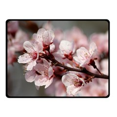 PLUM BLOSSOMS Double Sided Fleece Blanket (Small)  by trendistuff