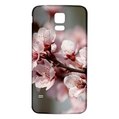 Plum Blossoms Samsung Galaxy S5 Back Case (white) by trendistuff