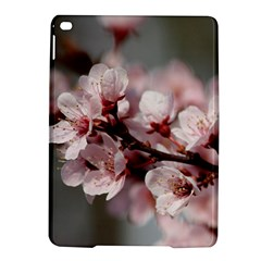 Plum Blossoms Ipad Air 2 Hardshell Cases by trendistuff