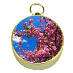 Pink Flowers Gold Compasses by trendistuff