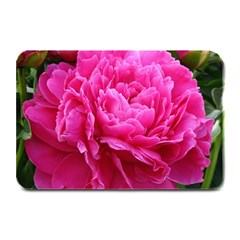 PAEONIA ELEANOR Plate Mats by trendistuff