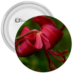 Lilium Red Velvet 3  Buttons by trendistuff