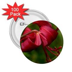 Lilium Red Velvet 2 25  Buttons (100 Pack)  by trendistuff