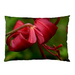 Lilium Red Velvet Pillow Cases (two Sides) by trendistuff