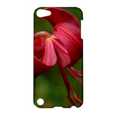 Lilium Red Velvet Apple Ipod Touch 5 Hardshell Case by trendistuff