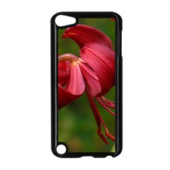 Lilium Red Velvet Apple Ipod Touch 5 Case (black) by trendistuff