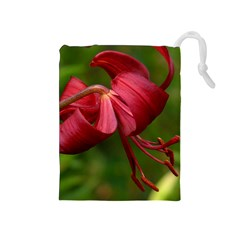 Lilium Red Velvet Drawstring Pouches (medium)