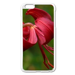 Lilium Red Velvet Apple Iphone 6 Plus/6s Plus Enamel White Case by trendistuff