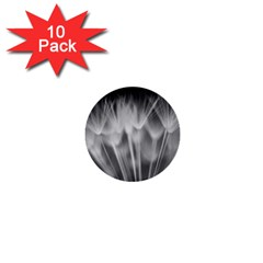 Dandelion 1  Mini Buttons (10 Pack)  by trendistuff