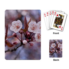 Cherry Blossoms Playing Card by trendistuff