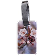 Cherry Blossoms Luggage Tags (one Side)  by trendistuff