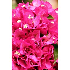 Bougainvillea 5 5  X 8 5  Notebooks by trendistuff