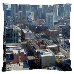 Chicago Large Flano Cushion Cases (one Side)  by trendistuff