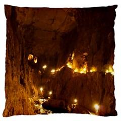 Skocjan Caves Large Flano Cushion Cases (one Side)  by trendistuff