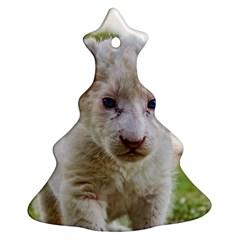 White Lion Cub Ornament (christmas Tree) by trendistuff