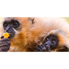 Two Monkeys You Are Invited 3d Greeting Card (8x4)