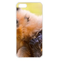 Two Monkeys Apple Iphone 5 Seamless Case (white) by trendistuff