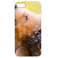 Two Monkeys Apple Iphone 5 Hardshell Case With Stand by trendistuff