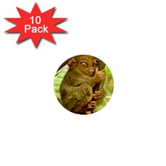 Tarsier 1  Mini Magnet (10 Pack)  by trendistuff