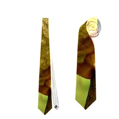 TARSIER Neckties (Two Side)  by trendistuff