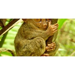Tarsier You Are Invited 3d Greeting Card (8x4)