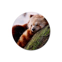 Red Panda Rubber Coaster (round)  by trendistuff