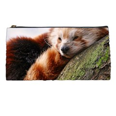 Red Panda Pencil Cases by trendistuff