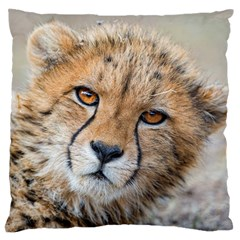 Leopard Laying Down Standard Flano Cushion Cases (two Sides)  by trendistuff