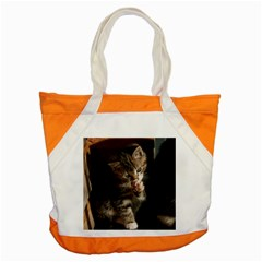 Talk To The Paw Accent Tote Bag  by trendistuff
