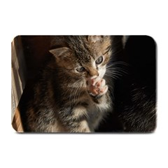 TALK TO THE PAW Plate Mats by trendistuff