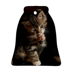 Talk To The Paw Bell Ornament (2 Sides) by trendistuff