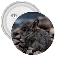Small Baby Bunny 3  Buttons by trendistuff
