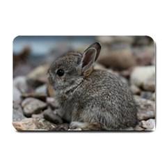 Small Baby Bunny Small Doormat  by trendistuff