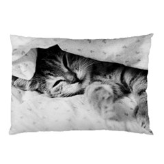 SLEEPY KITTY Pillow Cases by trendistuff