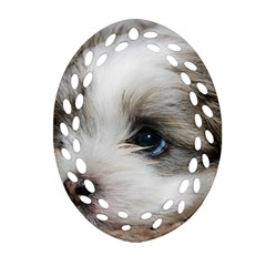 SAD PUPPY Oval Filigree Ornament (2-Side)  by trendistuff
