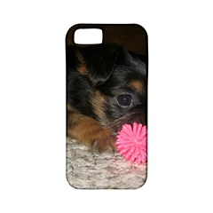 Puppy With A Chew Toy Apple Iphone 5 Classic Hardshell Case (pc+silicone) by trendistuff