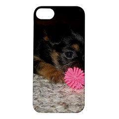 Puppy With A Chew Toy Apple Iphone 5s Hardshell Case by trendistuff