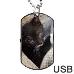 Pretty Blue Eyed Kitty Dog Tag Usb Flash (two Sides)  by trendistuff