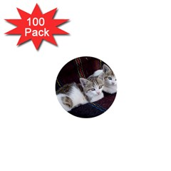 Kitty Twins 1  Mini Buttons (100 Pack)  by trendistuff