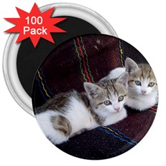 Kitty Twins 3  Magnets (100 Pack) by trendistuff