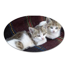 Kitty Twins Oval Magnet by trendistuff