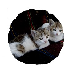 Kitty Twins Standard 15  Premium Round Cushions by trendistuff