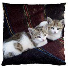 Kitty Twins Large Flano Cushion Cases (two Sides)  by trendistuff